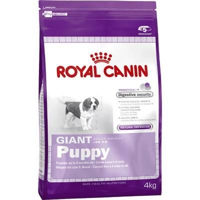 Giant puppy-Royal Canin-hrana za štence gigantskih rasa