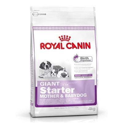 Giant starter Royal canin hrana za kuje i štence
