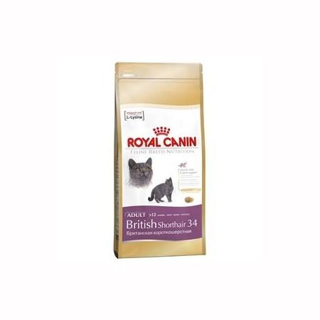 Hrana za mačku BRITISH SHORTHAIR  Royal Canin