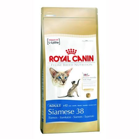 Hrana za sijamsku mačku Siamese Adult  Royal canin