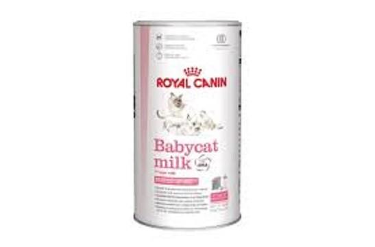 Mleko u prahu za mačiće Royal Canin 300 gr.