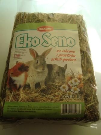 Seno-eko