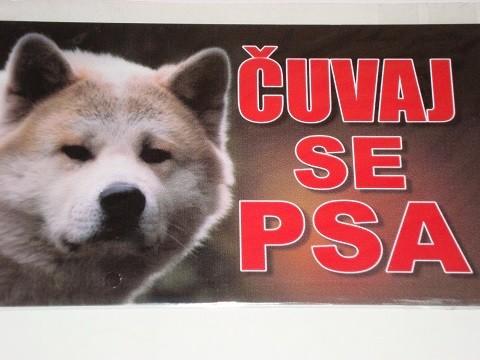 Tabla Čuvaj se psa-AKITA INU
